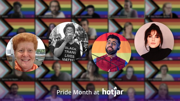 Hotjar Pride Month Panel