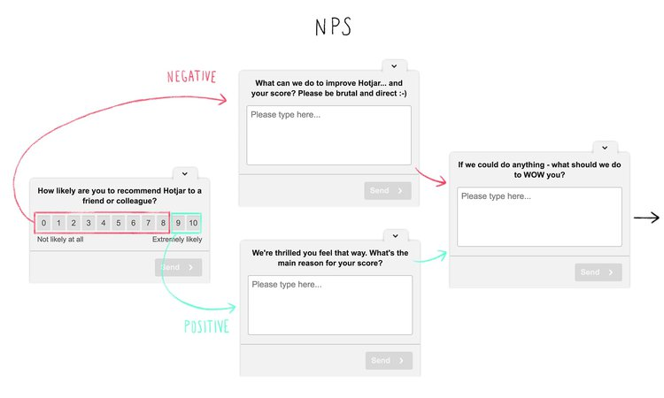 determine your net promoter score with surveys