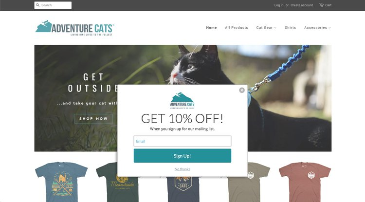 an example of an ecommerce popup discount code