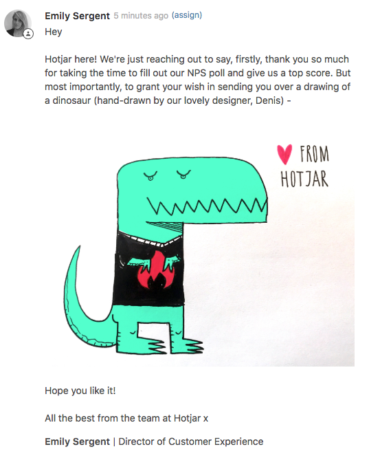 An example of customer reply by the Hotjar team