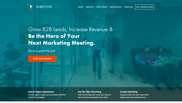directiveconsultingwebsite.png